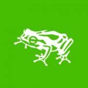 frogdesig